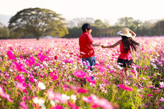 Happy children fun at cosmos flowers field Stock Photos
