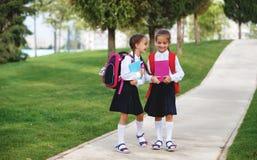 Happy children  girlfriend schoolgirl student elementary school Royalty Free Stock Photo