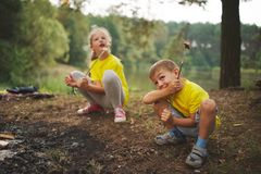 Happy children hiking in the forest Royalty Free Stock Images