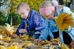 Happy children playing in autumn leaves Royalty Free Stock Photo