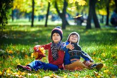 Happy children playing in beautiful autumn park on warm sunny fall day. Kids play with golden maple leaves royalty free stock photography