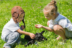 Happy children playing with the dog, French bulldog Royalty Free Stock Image