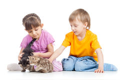 Happy children playing with kitten Stock Images