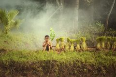Happy children playing at nature in rainy autumn day in the fields. Or countryside,Thailand,Asia royalty free stock image