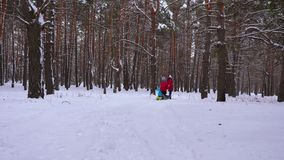 Happy children ride their mom on sled and an inflatable snow tube in pine forest. happy family mom and kids playing in stock photography