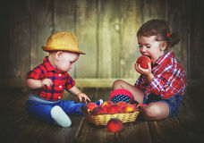 Happy children sister and baby brother with a basket of peaches Stock Image