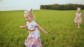 Happy children twins running around laughing and playing in the meadow in the summer. stock video footage