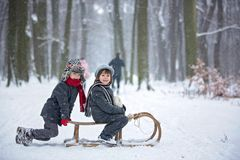 Happy children in a winter park, playing together with a sledge. While snowing. Childhood happiness concept stock images
