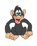 Happy Chimp Royalty Free Stock Photos