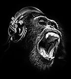 DJ CHIMPANZEE chimp headphones music T-shirt design. Happy chimpanzee chimp with headphones cool funny music design can be printed straight onto a t-shirt stock photo