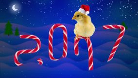 2017 Happy Chinese New Year, beautiful young rooster sitting on the candy cane. And opens mouth, candies as a numbers of year, background with snowfall, moon