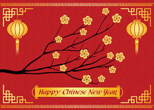 Happy Chinese new year card is  lanterns ,Gold money flower and branch Royalty Free Stock Photo