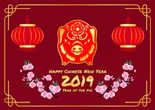 Happy chinese new year 2019 card with Red Gold pig zodiac sign and lantern and peach blossom in line chinese frame and red backgro. Und vector design Royalty Free Stock Images