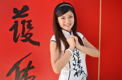 Happy chinese new year greating Stock Photography