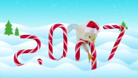 Happy Chinese new year 2017 greeting card funny concept. Little rooster sitting on the candy cane and then falls in to snow, candies as a numbers of year