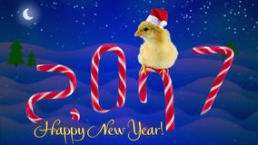 2017 Happy Chinese New Year greeting card with text, new born cute rooster. Sitting on the candy cane, background with snowfall, moon and start, candies as a