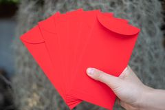 Happy Chinese new year, Hand holding red envelope or called Angpao on green bokeh background from trees. Happy Chinese new year, Hand holding red envelope or stock photo
