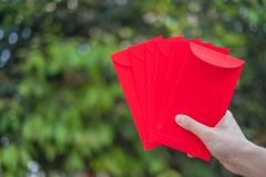Happy Chinese new year, Hand holding red envelope or called Angpao on green bokeh background from trees. Happy Chinese new year, Hand holding red envelope or stock photos