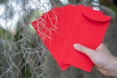 Happy Chinese new year, Hand holding red envelope or called Angpao on green bokeh background from trees. Happy Chinese new year, Hand holding red envelope or stock photography