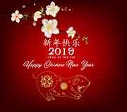 Happy Chinese New Year 2019, Year of the Pig. Lunar new year. Chinese characters mean Happy New Year stock photography
