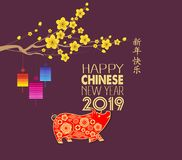 Happy Chinese New Year 2019 year of the pig. Chinese characters mean Happy New Year, wealthy, Zodiac sign for greetings card, flye. Rs, invitation, posters vector illustration