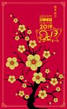 Happy Chinese New Year 2019 year of the pig. Chinese characters mean Happy New Year, wealthy, Zodiac sign for greetings card, flye Stock Photos