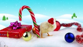 Happy Chinese new year 2017 with young rooster, standing near candy cane. And gift on winter decorations with snowfall, copy space
