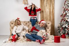 Happy christmas celebrating of young people with dogs and gifts stock photos