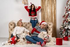 Happy christmas celebrating of young people with dogs and gifts royalty free stock image