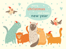 Happy Christmas and Happy New Year card with cute cats and birds in Santa hat. Vector illustration, cute cartoon animals, greeting cards with text on clouds Royalty Free Stock Image