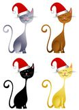 Happy Christmas Hat Cats Royalty Free Stock Image