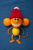 Happy Christmas monkey in santa hat Royalty Free Stock Photo