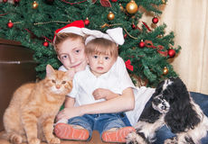 Happy Christmas! stock images