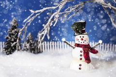 Happy Christmas Snowman 2. A smiling snowman dressed in black top hat adorned with Christmas greenery and a red scarf. Snowman's arms are outreaching and covered