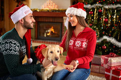 Happy Christmas time together Royalty Free Stock Images