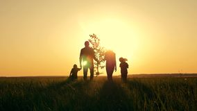 Happy, close-knit family with children, silhouette of farmers outdoors holding hands at sunset. Dad holds a young tree stock video footage