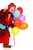 Happy clown. Happy smiling female clown, colorfull dressed, studio shot on white background Royalty Free Stock Photo