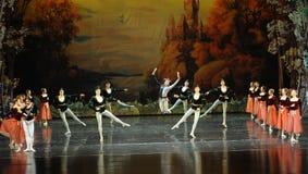 Happy the clown-ballet Swan Lake Stock Photo
