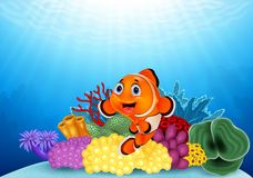 Happy clown fish with beautiful coral Royalty Free Stock Photo