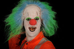 Happy clown with green wig stock photo