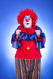 Happy clown in red costume on blue background Stock Photography