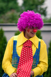 Happy clown with violet wig. Happy clown with big tie and violet wig performing his show Stock Images
