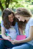 Happy college students working together Royalty Free Stock Photos