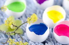 Happy colorful Easter shells and spring flowers. Happy colorful Easter shells and yellow spring flowers stock image
