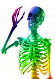 Happy Colorful Skeleton Royalty Free Stock Images