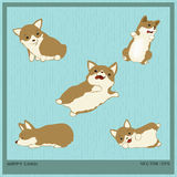 Happy Corgi. Vector illustration Happy Corgi cartoon Royalty Free Stock Photos