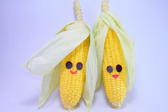 Happy corns Stock Image