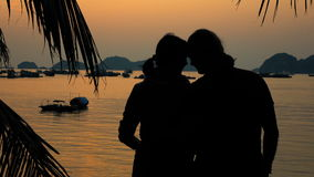 Happy couple admiring the beautiful sunset stock footage