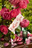 Happy couple on the background of garden roses stock photos