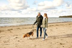 Happy couple with beagle dog on autumn beach royalty free stock photography